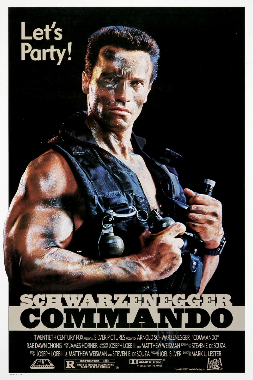 Poster Straight to Video XL: Arnold Schwarzenegger