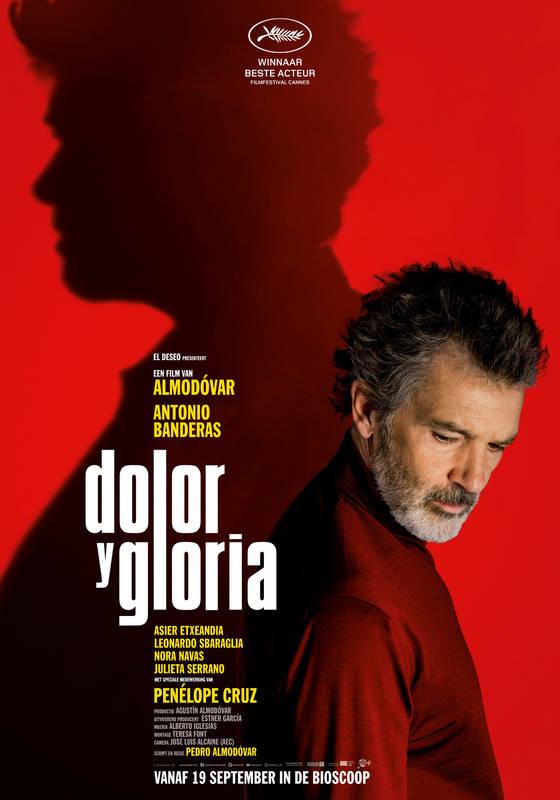 Poster Dolor y Gloria